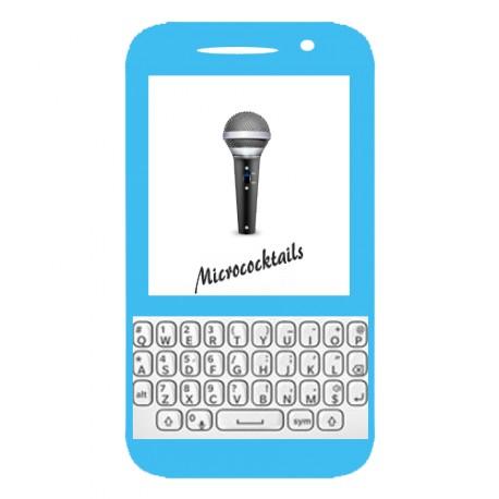 Réparation du Micro Blackberry Q5