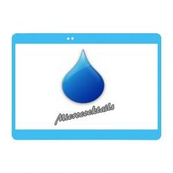 Réparation desoxydation Samsung Galaxy Tab 3 10'
