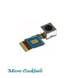 Appareil Photo/Caméra arrière (Samsung Galaxy S2)